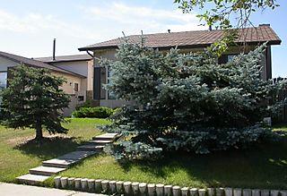 DSCN4694