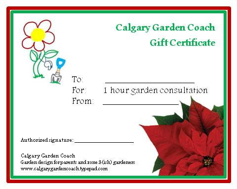 Xmas gift certificate