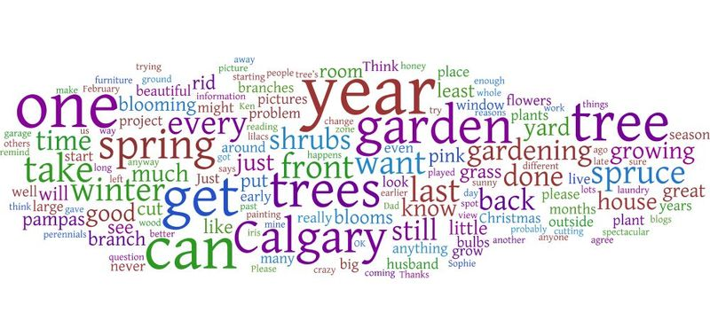 Feb09wordle
