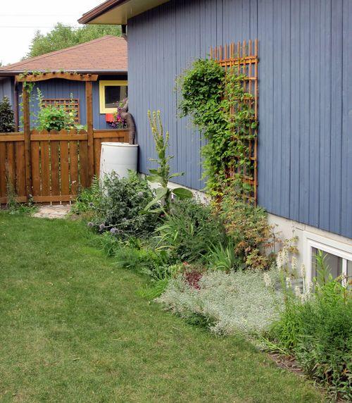 Calgary Garden Coach: My Side Garden