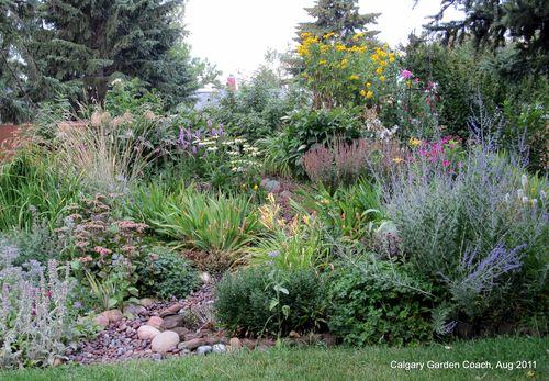 Calgary Garden Coach: my Adventure Garden