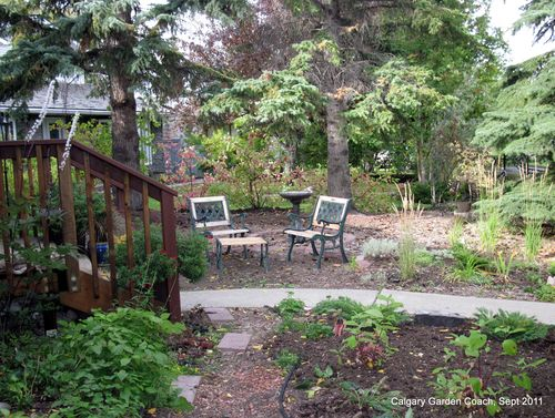 Calgary Garden Coach: the front Entry Garden - big plans for next ...