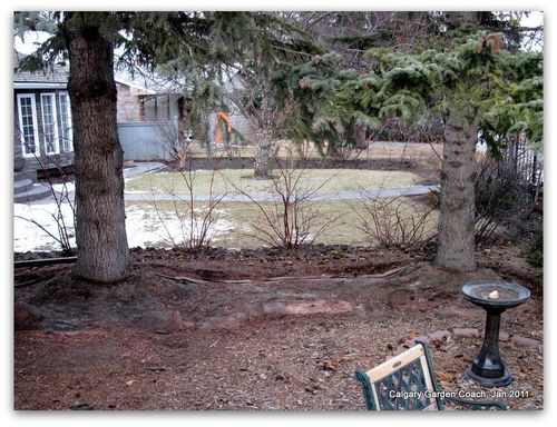 Calgary Garden Coach: red shale mulch - the other bane of my existence